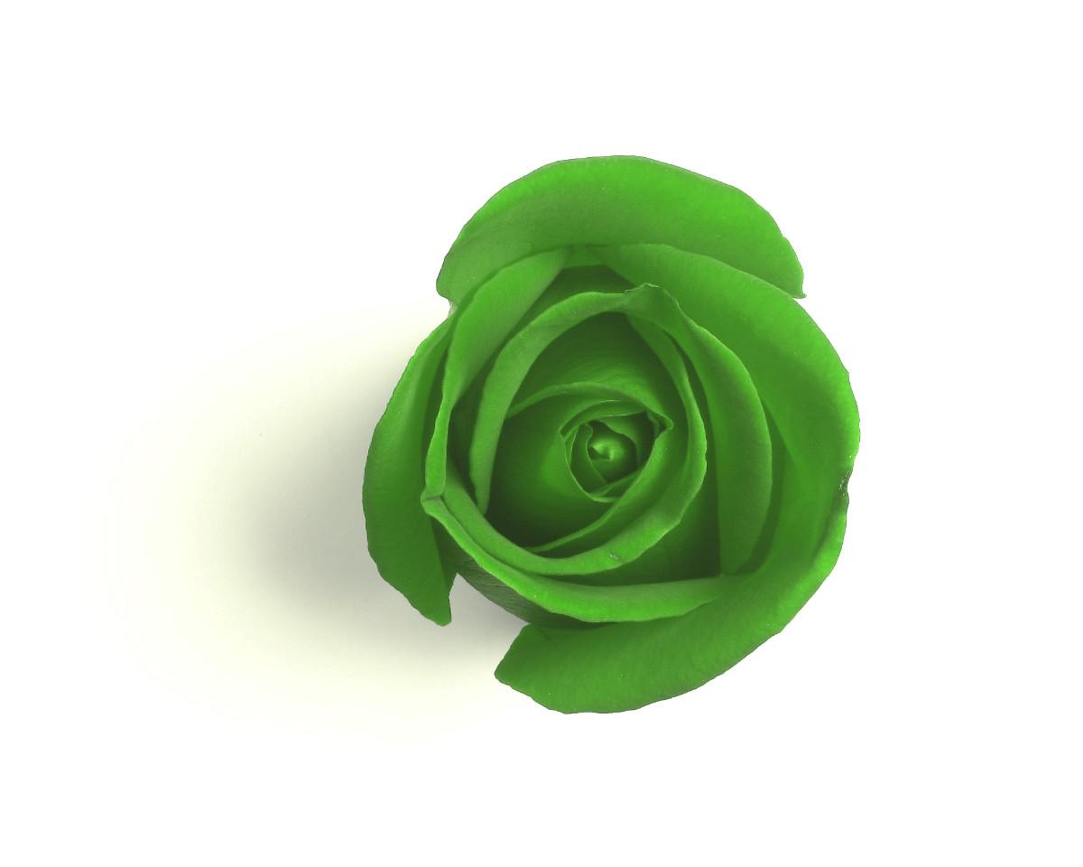 rosa-verda